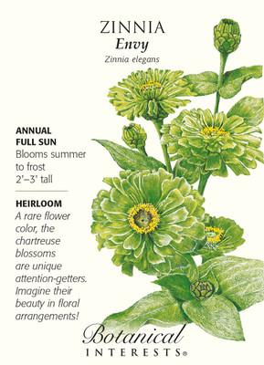 Envy Zinnia Seeds - .75 grams - Annual