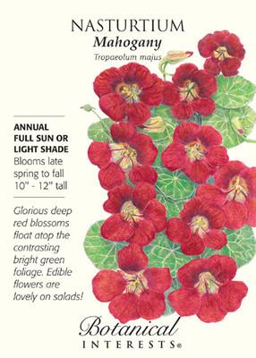 Mahogany Nasturtium Seeds - 2 grams - Annual