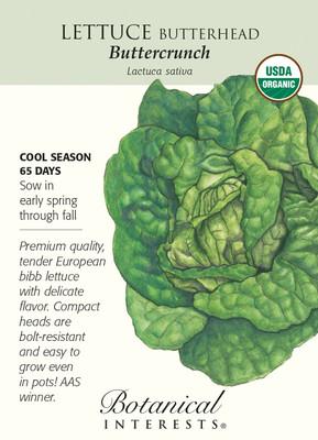 Butterhead Buttercrunch Lettuce Seeds - 1g - Organic