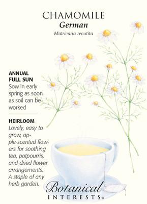 German Chamomile Seeds - 500 mg - Heirloom