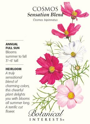 Sensation Blend Cosmos Blend Seeds - 1.5 grams