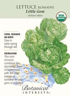 Little Gem Romaine Lettuce Seeds - 1 grams - Organic