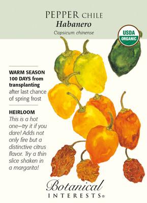 Habanero Chile Pepper - 30 Seeds - Organic