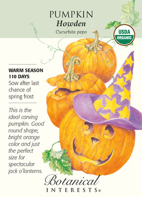 Howden Pumpkin Seeds - 3 grams - Organic