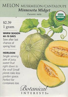 Organic Minnesota Midget Muskmelon/Cantaloupe Seeds - 1 g