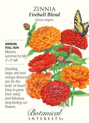 Fireball Blend Zinnia Seeds - 1 gram - Botanical Interests