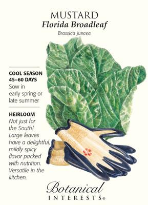 Florida Broadleaf Mustard Seeds - 2 grams - Botanical Interests