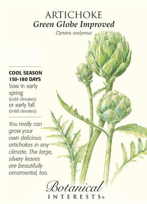 Green Globe Improved Artichoke Seeds - 18 Seeds