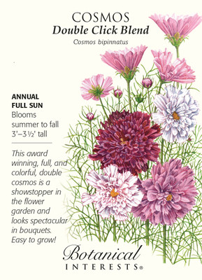 Double Click Blend Cosmos - 25 Seeds