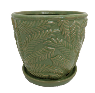 "Beach Fern Ceramic Pot with Attached Saucer - Meadow Green - 5"" x 4.75"""