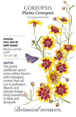 Plains Coreopsis Seeds - 100 Mg