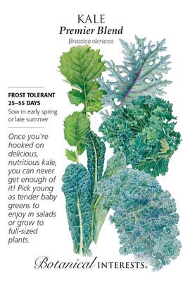 Premier Blend Kale Seeds - 3 Grams