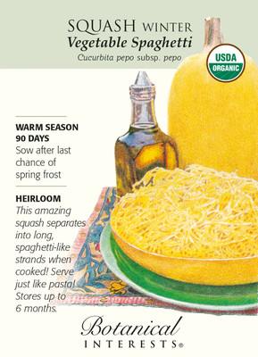Organic Vegetable Spaghetti Winter Squash Seeds - 3 grams