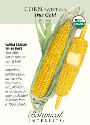 Organic True Gold Sweet Corn Seeds - 8 grams