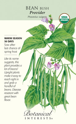 Organic Provider Bush Bean Seeds - 50 grams