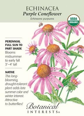 Organic Purple Coneflower Seeds - 400 mg - Echinacea