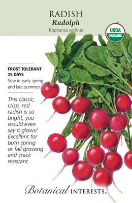 Organic Rudolph Radish Seeds - 1 gram