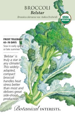 Organic Belstar Hybrid Broccoli Seeds - 25 Seeds