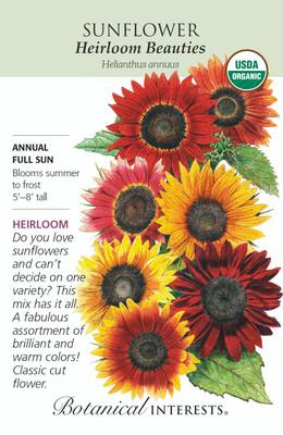 Organic Heirloom Beauties Sunflower Seeds - 2 grams