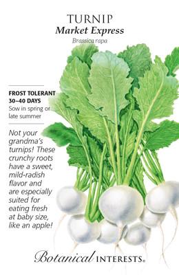 Market Express Turnip Seeds - 400 Mg