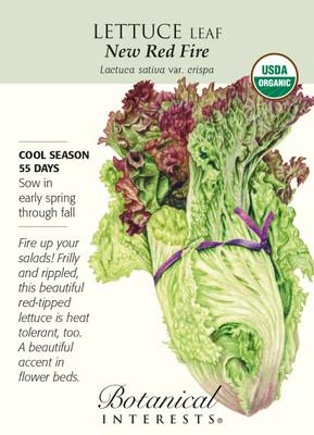 Organic New Red Fire Leaf Lettuce Seeds - 250 Milligrams