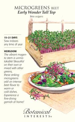 Early Wonder Tall Top Beet Microgreen Seeds - 20 grams