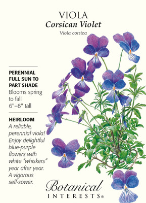 Corsican Violet Viola Seeds - 100 mg - Heirloom