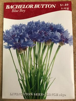 Blue Boy Bachelor Button Seeds - 1.25 Grams