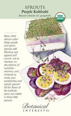 Purple Kohlrabi Sprouts - 10 Grams