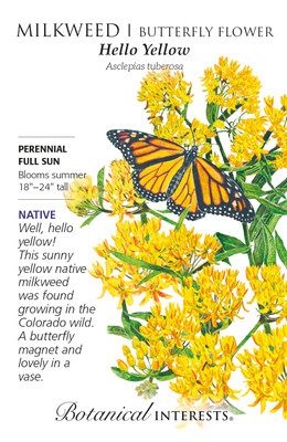 Hello Yellow Milkweed/Butterfly Flower- 150 Mg