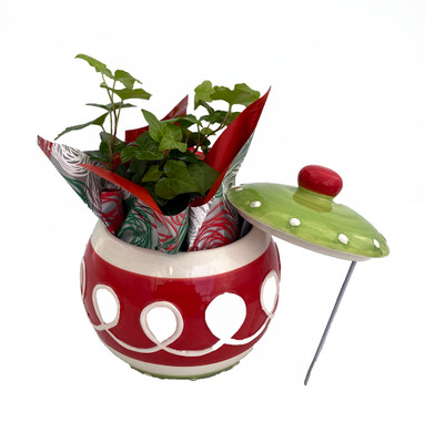 """Candy Swirl Holiday Ornament Planter with Live Ivy Plant - 6.5"""" Globe Ornament"""