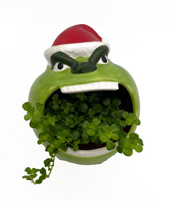 "Mean & Green Holiday Howler Indoor Garden Planter - 5"" Ceramic Vase/Live Plant"