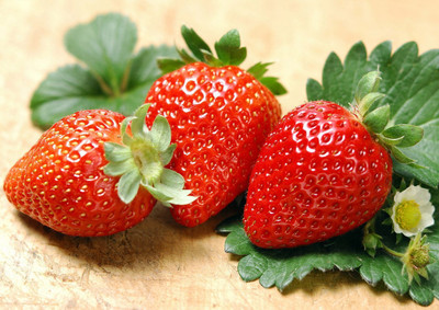 Albion Everbearing Strawberry 10 Bare Root Plants - NEW! Extra Large & Sweet