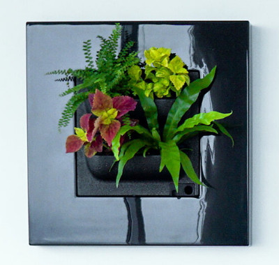 """Living Picture - Black - Self Watering - 20.3""""x20.3""""x4.4"""" - Free Shipping"""