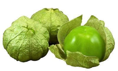 """Tomatillo Plant - Husk Tomato - 2.5"""" Pot"""