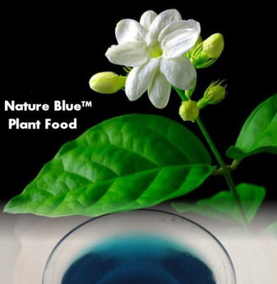 Nature Blue Plant Food™ 20-10-20 Formula - 1.5 lb Concentrated Makes 75+ Gallons