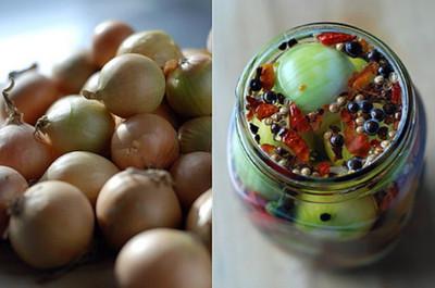 Stuttgarter Yellow Onion Sets - 100 Bulbs - Sweet Taste