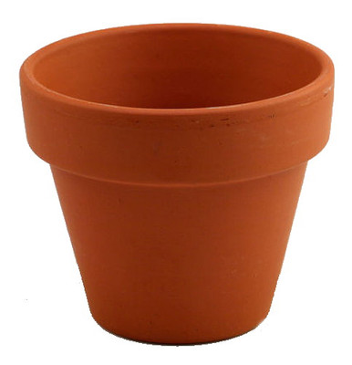 "5 - 6"" Clay Pots - Great for Plants and Crafts"