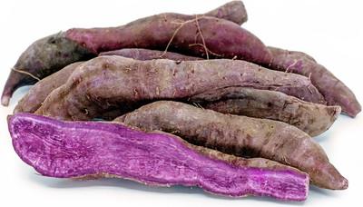 All Purple Sweet Potato Slips - Ipomoea batatas - 2 Slips