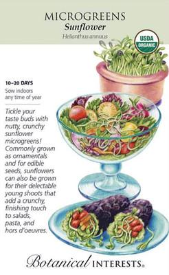 Organic Sunflower Microgreens Seeds - 40 grams
