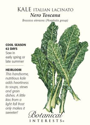 Italian Nero Toscana Kale Seeds - 500 mg - Heirloom - Botanical Interests