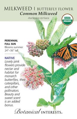 Organic Common Milkweed/Butterfly Flower Seeds - Heirloom - 150mg