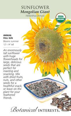 Organic Mongolian Giant Sunflower Seeds - 12 Grams