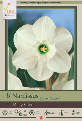Misty Glen Daffodil 8 Bulbs - 14/16 cm Bulbs