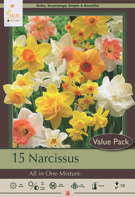 All in One Narcissus Mix - 15 Bulbs - 12/14 cm Bulbs - Value Size