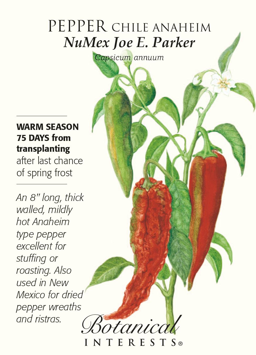 Anaheim Numex Joe E Parker Chile Pepper Seeds 500 Mg Hirt S Gardens