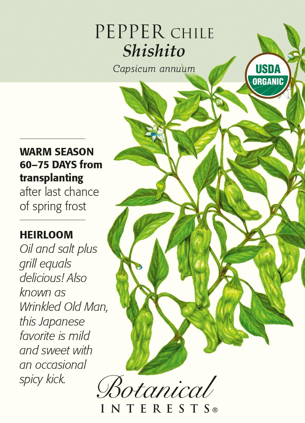 25 Heirloom Shishito Pepper Seeds Organically Grown