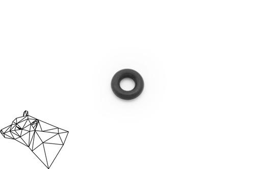Viton Extractor O-Ring