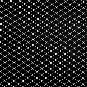 White Russian Netting Fabric