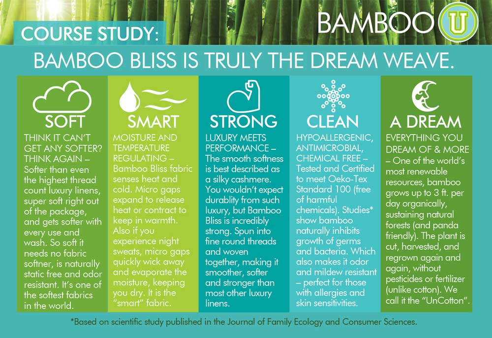 bamboo-u-course-study.jpg
